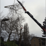 Daleside 1 Crane