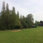 An image of the field in the grounds of The Mount School in Leeds, with trees being treated by tree surgeons at Treesaw.