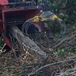 An image of tree wood being chopped up by a large wood chopper from Tree surgery specialists, Treesaw.