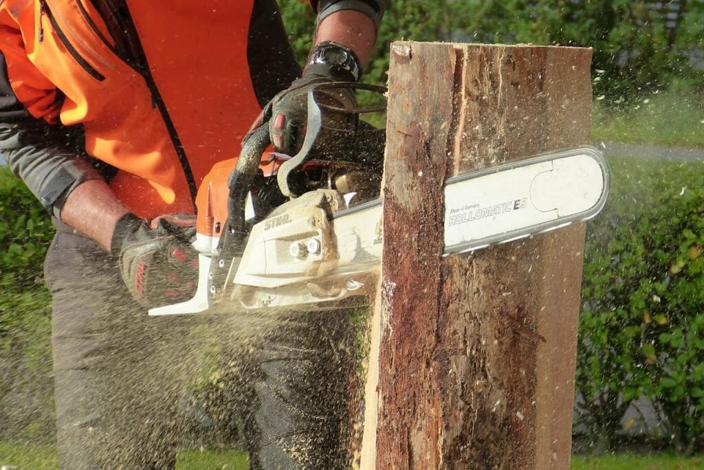 A picture of a tree surgeon using a chainsaw to cut through a stump