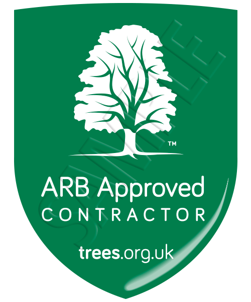 The logo from the Arboricultural Association indicating the tree surgeons are ARB approved, which is a green shield with a white tree on it and the words 'ARB Approved Contractors'